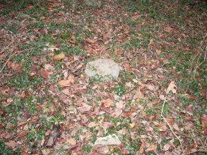 Unmarked field stone within Ray Cemetery, Tennessee