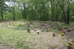Coon Dog Cemetery Overview