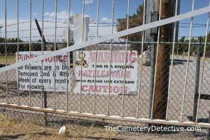 Rattlesnakes in the Cemetery