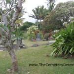Niulii Cemetery
